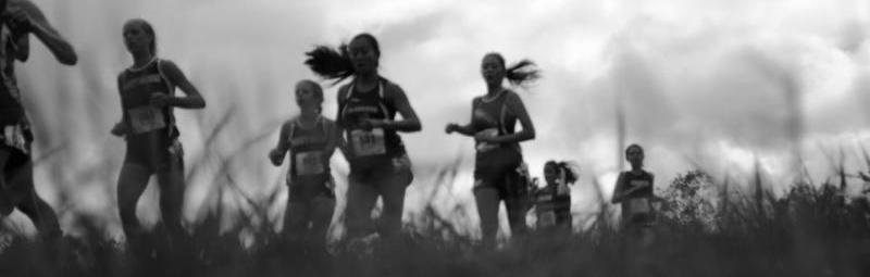 XC Runners 1